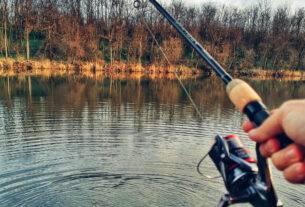 Cea mai buna lanseta pescuit